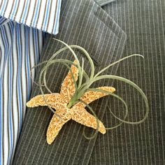 Beach Wedding Lapel Pin with air plant  Starfish Boutonniere,Wedding, air plant boutonniere magnet Nautical, Destination Wedding