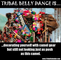 ❤️ ATS Belly Dance Lessons, Belly Dancing Classes, Tribal Fusion, Dance Memes, Tribal Costume, Dance Like No One Is Watching, Tribal Belly Dance, Dance Fashion, Dancing In The Rain