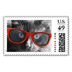 One Cool Cat, Hipster Cat in Red Sunglasses Postage