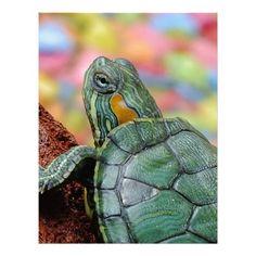 Turtle Animal Letterhead Design