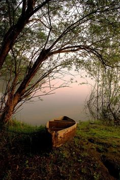 Dwell as near as possible to the channel in which your life flows. ~ Henry David Thoreau