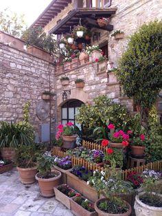 Assisi spazio fiorito