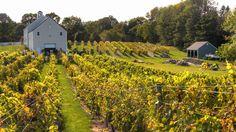 Jewell Towne Vineyards - So Hampton NH .. love their wine.
