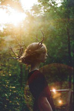wooden antlers