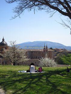 #Urbino in Italy