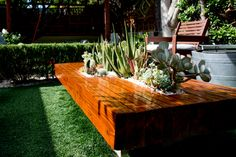 Succulent/cacti table makes for the perfect conversation starter at parties.