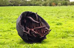 Woodlouse Woodlice, Maltese, Art School, Contemporary Artists, Insects, Sculptures, Arts And Crafts, Art And Craft, Art Crafts
