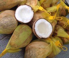 Bán dừa sáp tại quận phú nhuận   http://aloduasap.com/ban-dua-sap-cau-ke-tra-vinh-gia-re-quan-phu-nhuan-tphcm.html/