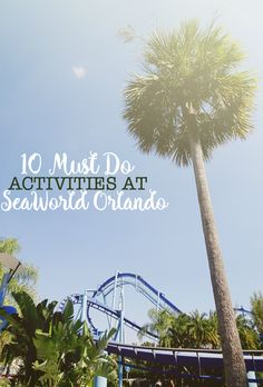 Get ready for an exciting adventure at SeaWorld Orlando! Here are 10 MUST DO activities for your family at this Orlando theme park! @reservedirect @seaworld #ad #discoverorlando #realamazing