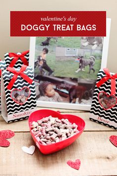 Valentine's Day Doggy Treat Bags via @SheenaTatum #TreatThePups #ad
