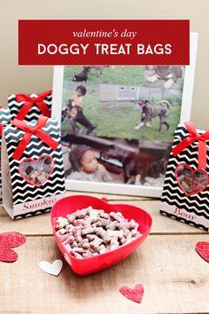 Valentine's Day Doggy Treat Bags via @SheenaTatum #TreatThePups #ad