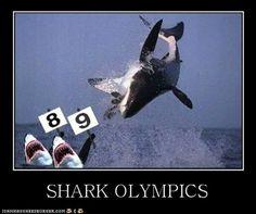 Shark Olympics