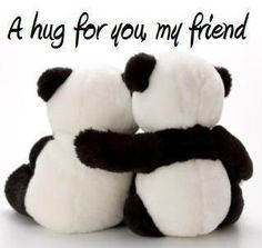 panda bear hug for you my friend Hug Pictures, Happy Hug Day, Happy Weekend, My Best Friend, Best Friends, Dear Friend, Friends Hugging, Hug Quotes, Qoutes