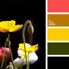 color amarillo, color negro, color rojo amapola, colores para la decoración…