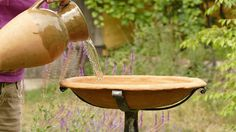 Garden Bird Bath Terracota Bird Bath Cast Iron by GlinkaDesign