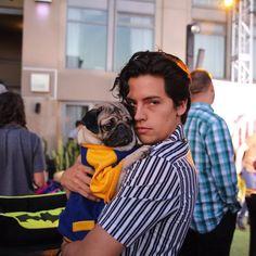 Warner Bros. TV (@warnerbrostv) | Doug The PugVerified account @itsdougthepug  23h23 hours ago  More   They should have a pug on Riverdale