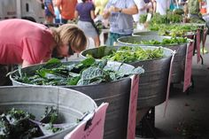 My Weekend Guide to the Farmers Market #blog #market #fresh #eats