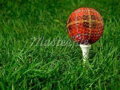 The plaid golf ball