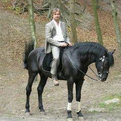 Floris Wolfs on a horse!! <3