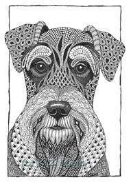 Resultado de imagen para dibujo schnauzer tattoo