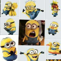 Minions Minions Love, Minions 2014, Friday Funny Pictures, Little Big Planet, Despicable Me 3, Bee Do, Scooby Doo, Childhood, Cute