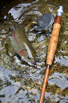 A rainbow on an 8' EF Payne with an vintage Hardy Perfect - how much better can it get? www.buildfishinglures.com www.pennylure.com