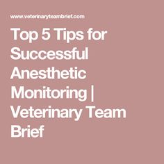 Top 5 Tips for Successful Anesthetic Monitoring | Veterinary Team Brief