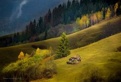 Under sunshine by Hamos Gyozo on 500px