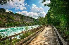 Summer day trip: Located about an hour away from Toronto along the Niagara River, White Water Walk is one of a handful of attractions in the area that dispenses with kitsch and focuses on the natural wonder that is Niagara's topography.