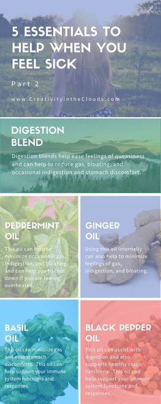 Looking for natural ways to feel better when you feel sick? Click through to learn about 5 essential oils to help with upset stomachs.  Including digestion blends, peppermint oil, ginger oil, basil oil, and black pepper oil.
