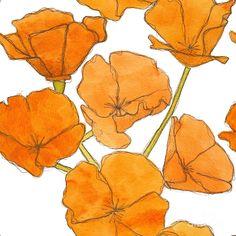 California Poppies Painting