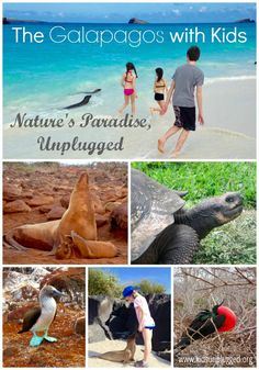 The Galapagos Islands With Kids | Kids Unplugged