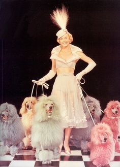 Doris Day, 1953