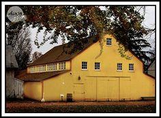 The Yellow Barn at Landis Valley Museum #vintagewedding #rusticwedding #barnwedding #weddinglocation #fallwedding