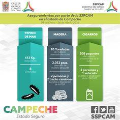 Productos ilegales asegurados en el Estado de Campeche.  Enero - Abril 2016