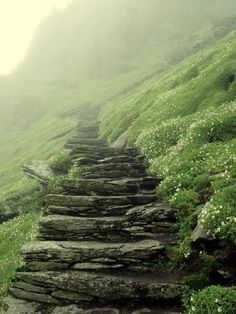 Uploaded by tenderly. Find images and videos about nature, green and mountain on We Heart It - the app to get lost in what you love. Beautiful World, Beautiful Places, Landscape Photography, Nature Photography, Stone Stairs, Stairway To Heaven, Abandoned Places, Pathways, Stairways