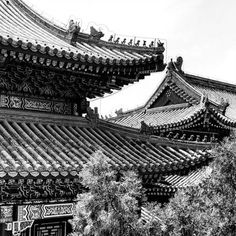 "World Menagerie Temple Roofs Photographic Print on Wrapped Canvas Size: 12"" H x 12"" W x 0.75"" D"
