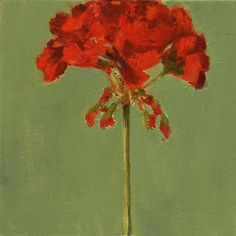 Still Life Painting, Red Geranium Flower, Original Oil on FLAT Canvas board, 8x8 inch Wall Art