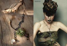 Viola_living_jewels_2