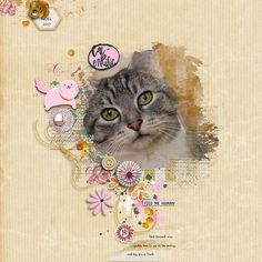 Caterrific by Rae at The Lilypad using digital scrapbooking products from The Lilypad