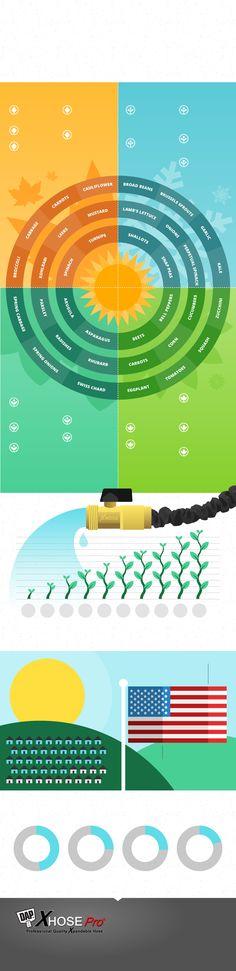 planting infographic
