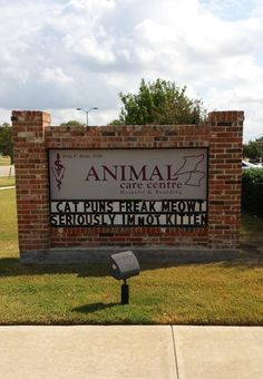 Local Animal Hospital Pun Addiction