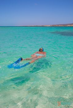 Snorkeling at Turquoise Bay in Exmouth. Western Australia