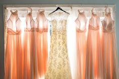 Elegant Bride's City Wedding Details Soft Pale Rose Pink and Gold Color Palette
