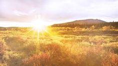 """Résultat de recherche d'images pour """"how solar energy work"""" Napoleon Hill, Beautiful Sunrise, Beautiful Day, Beautiful Things, Beautiful Sites, Beautiful Scenery, Happy Sabbath Quotes, Morning Meditation, Bible Verses"""