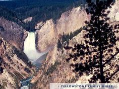 Yellowstone park - Been there, done that