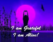 "Wording ""I am Grateful I am Alive"" and beautiful picture on front.Optional business info on back. Available in multiple colors"