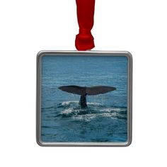 Hang Whale ornaments from Zazzle on your tree this holiday season. Start a new holiday tradition with thousands of festive designs to choose from. Holiday Traditions, Whale, Traditional, Christmas Ornaments, Design, Christmas Jewelry, Whales, Christmas Decorations, Design Comics