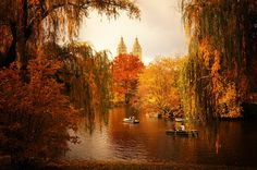 20 Amazing and Colorful Autumn Photos