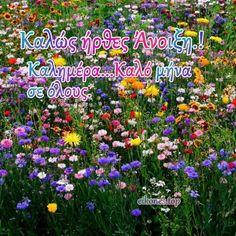 Εικόνες για καλωσόρισμα της Άνοιξης - eikones top Mina, Love, Plants, Amor, Plant, Planets